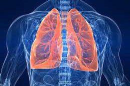 Выдыхайте: 5 проверенных способов укрепить здоровье легких