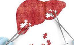 Борьба с гепатитом: на пороге революционных решений