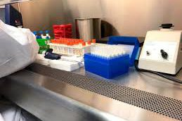 Ученые опробовали средневековое средство борьбы с бактериями