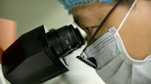 Biocad проведет в Китае КИ терапии меланомы