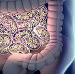 Отечественные ученые показали, как по микрофлоре можно диагностировать болезни