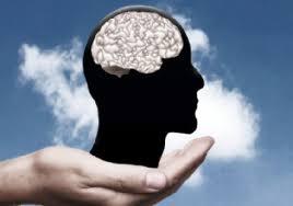 Неврологи нашли новое средство для поддержания мозга