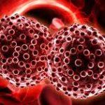 Раковые опухоли способны «затаиваться», пережидая химиотерапию