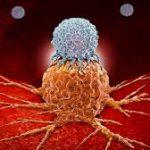 Измененный вирус оспы помог вылечить рак поджелудочной