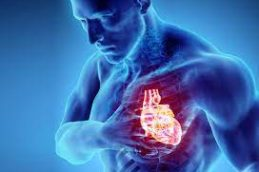 Представлена новая версия европейских клинических рекомендаций по диагностике и лечению острой и хронической сердечной недостаточности