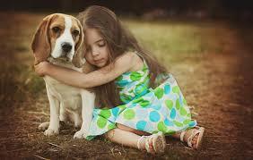Опасность домашних животных