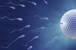Некоторым группам людей реально стоит задуматься о сохранении фертильности