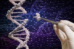 Генетики рассказали, как вариации в ДНК могут привести к биполярному расстройству
