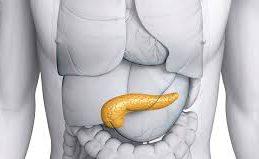 Заблуждения и факты о раке поджелудочной железы