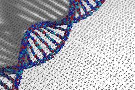 Развитие медицинской генетики требует законодательных изменений и новых системных решений