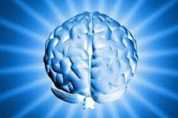 Неврологи смогли по-новому проследить за химическими процессами в мозге