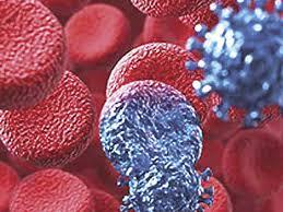 С каждым годом ВИЧ все больше угрожает здоровью россиян