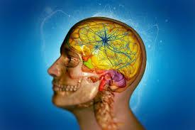 Исследователи смогли затормозить развитие болезни Паркинсона