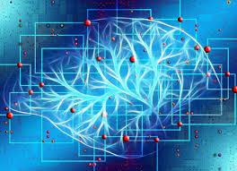 Неврологи нашли новый механизм формирования воспоминаний