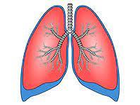 Российские ученые представили уникальную систему для вентиляции легких