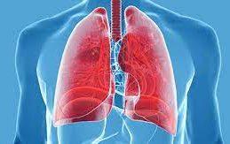 Заболевания легких и их признаки