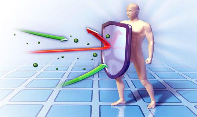 Иммунную систему возможно программировать