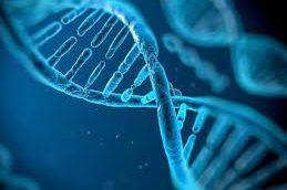 Российские генетики нашли мутацию, вызывающую гипертермию при общем наркозе
