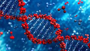 Ранний анализ транскрипции генов лейкоцитов обнаруживает ответ на вакцину