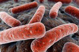 Новая смертельная форма туберкулеза распространяющаяся по Южной Африке