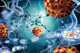 Стало понятным, как работает иммунотерапия
