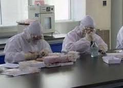 Грипп набирает силу в России, и среди вирусов опасный свиной