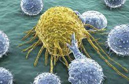 Представлены убедительные результаты исследований четырехнедельной терапии вирусного гепатита С