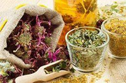 Вкусные рецепты для повышения иммунитета: полезные соки и настои