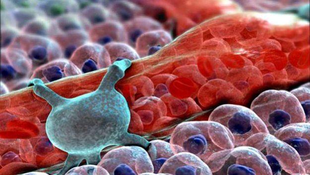 Вирус поможет вылечить нейродегенративные заболевания