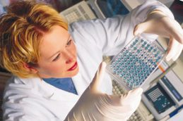 Как сдать анализы крови на уреаплазму уреалитикум и парвум (уреаплазмоз)?