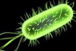 Симптомы и признаки цитомегаловируса