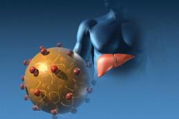 Симптомы и методы предупреждения вирусного гепатита А