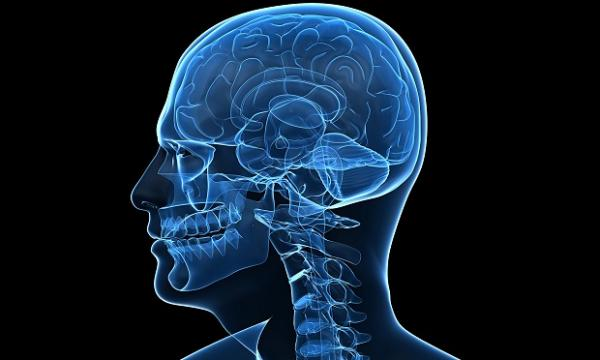 Болезнь энцефалит: понимание основ заболевания