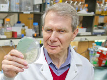 Бактериальную устойчивость побеждает антибиотик ADEP