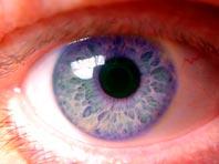 Ученые выявили удивительный механизм защиты глаз от атак бактерий
