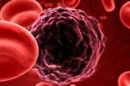 Ученые нашли ген, отвечающий за работу иммунной системы