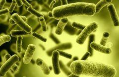 Еще одна победа над инфекциями