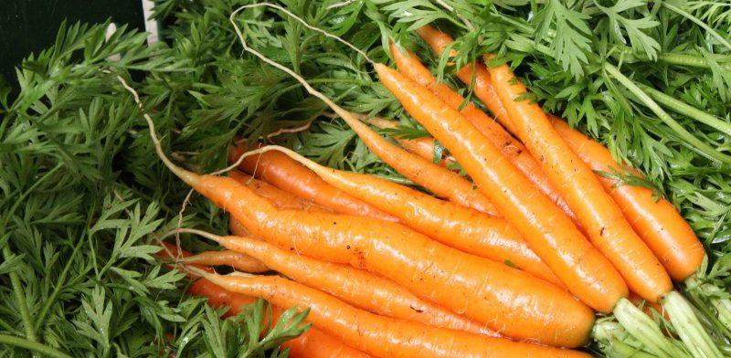 Два уникальных свойства морковного сока, о которых вы не знали