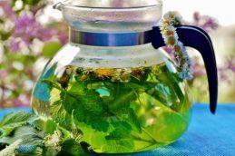 Эксперты рассказали о вреде травяных сборов для организма