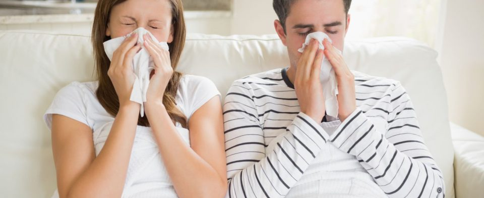 33 регион захватывает вирус ОРВИ