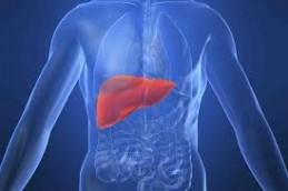 Что такое гепатит А?