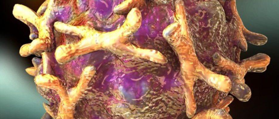 С болезнетворными бактериями бороться все труднее, предупреждает ВОЗ
