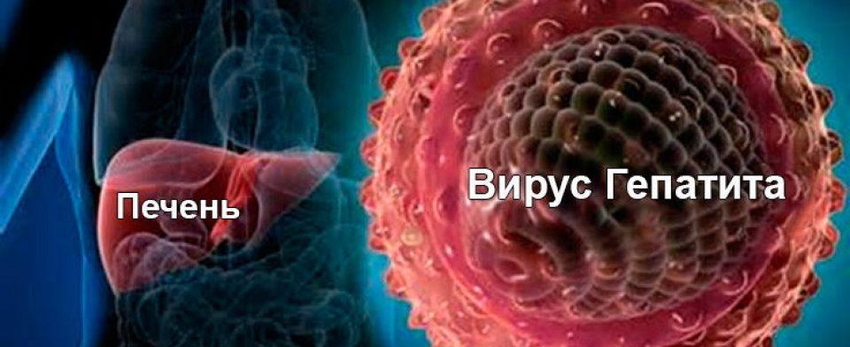 Жизнь после гепатита С: путь к элиминации опасной инфекции и истории пациентов, победивших болезнь