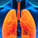 Врачи предлагают защищать лёгкие от гриппа с помощью антиоксидантов