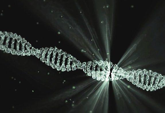 Ученые нашли вирус, который может погубить сотни тысяч людей