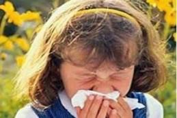 Аллергия к пыльце растений