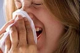 Аллергики не знают, куда деваться от одуванчиков