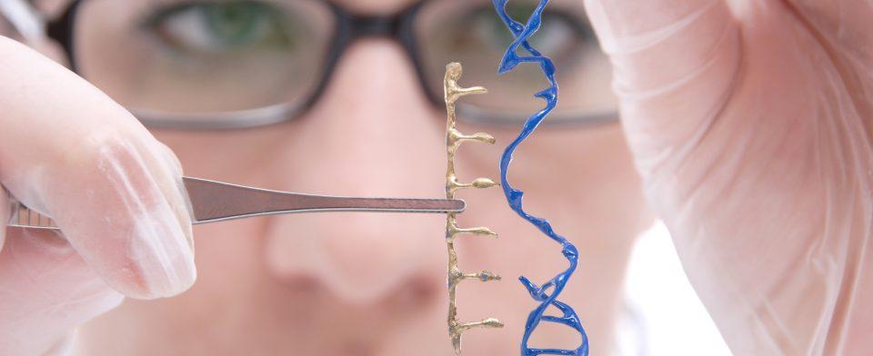 ВИЧ лучше лекарств лечит генная терапия