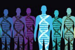 Полностью расшифрована структура ВИЧ