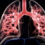 Лечение хронической обструктивной болезни легких при помощи стволовых клеток прошло первую фазу испытаний